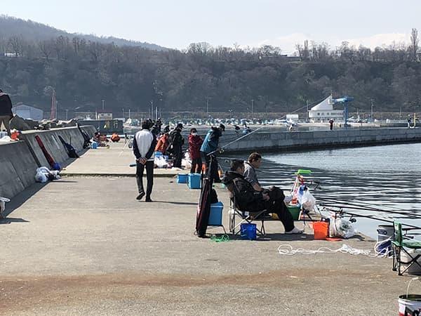 増毛港で春のホッケ釣り02