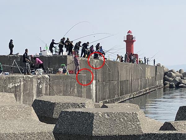 増毛港で春のホッケ釣り03